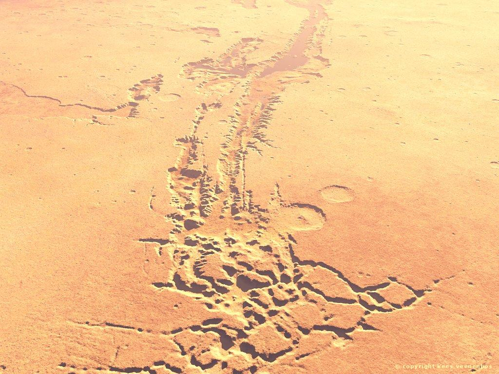Picture of the Day - Noctis Labyrinthus | International Space ...